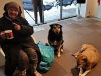 Treating Dogs For Homeless Lady